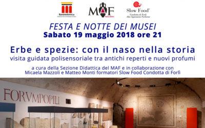 FESTA E NOTTE DEI MUSEI – Sabato 19 maggio 2018