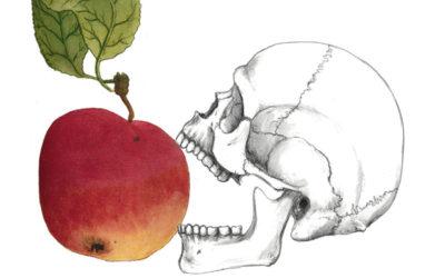 uniCIBO – Storia di cibo tra Paleolitico e Neolitico