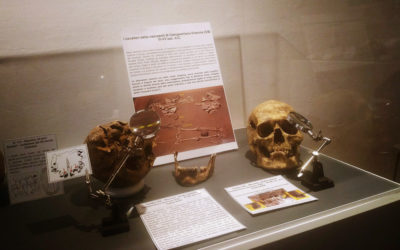 uniCIBO: tutte le visite guidate alla mostra