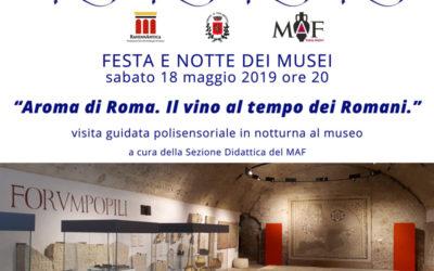FESTA E NOTTE DEI MUSEI – Sabato 18 maggio 2019