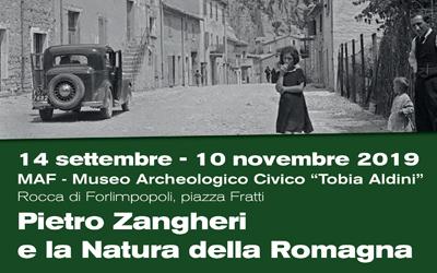 Pietro Zangheri e la Natura della Romagna in mostra