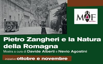 Ottobre e novembre: tutte le iniziative collaterali alla mostra Pietro Zangheri e la Natura della Romagna